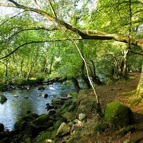 River Afon-Wales by Ferdinand Debnárik - Uncategorized All Uncategorized