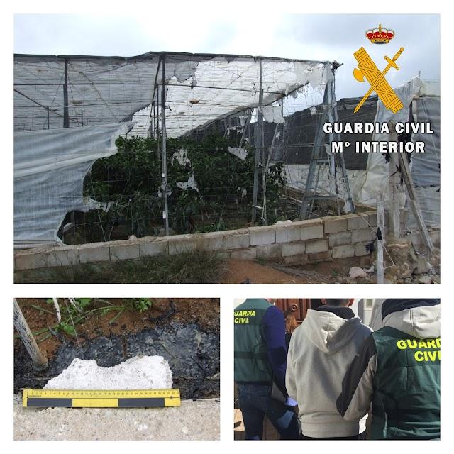 Imágenes de la operación difundidas por la Guardia Civil.