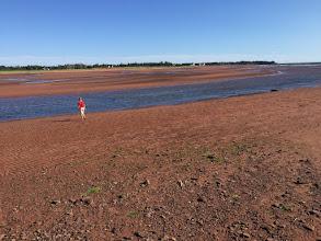 Photo: Czerwona ziemia poludniowej czesci Wyspy Ksiecia Edwarda.
