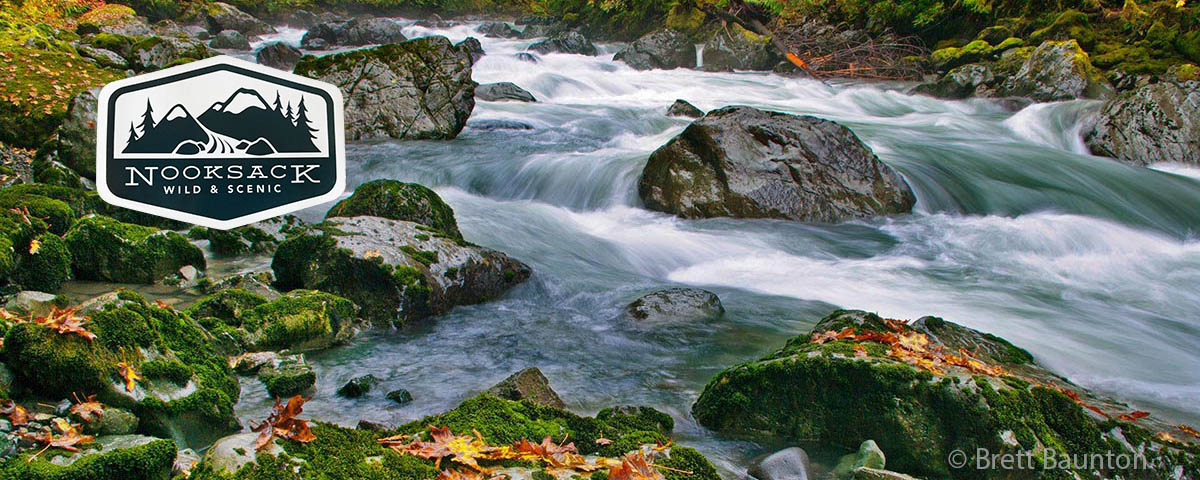 Attaining the Nooksack Wild and Scenic River                 © Brett Baunton