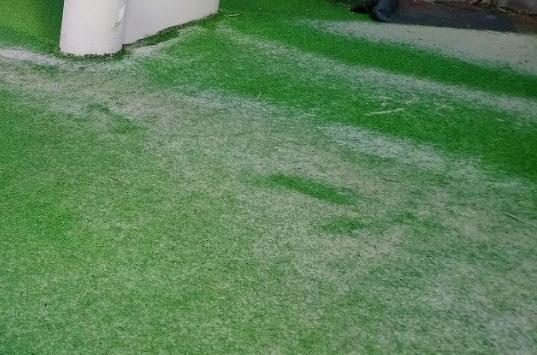 Hàng hóa cỏ nhân tạo có mấy chủng loại giá cạnh tranh nhat