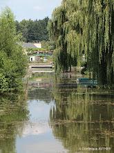 Photo: Le vieux canal avec vue sur le pont du Rialto (la passerelle fleurie en arrière plan)
