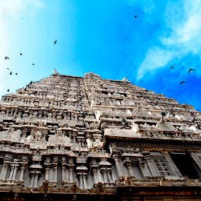 towards the sky by Prithiviraj Kiridarane - Buildings & Architecture Public & Historical ( temple, hindu, sky, india, architecture )