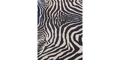 Mellan bädden med motiv Zebra