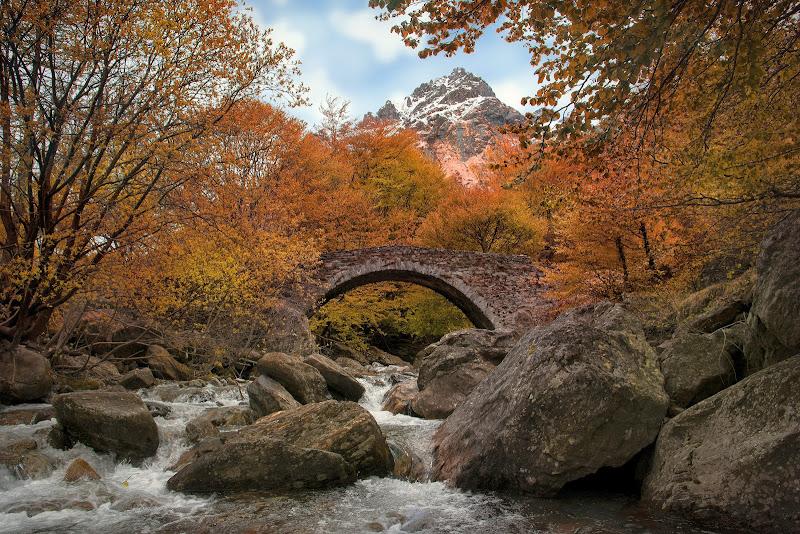 Autunno in Val Darengo di LorenzoVitali