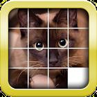 Slider Mania Animals Pro (Puzzles) icon