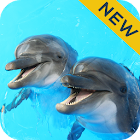Dolphin Sounds Sleep & Relax icon