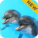 Dolphin Sounds Sleep & Relax - Androidアプリ