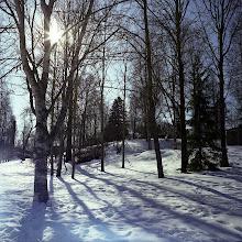 Photo: Naissaari CZJ Flectogon 50mm
