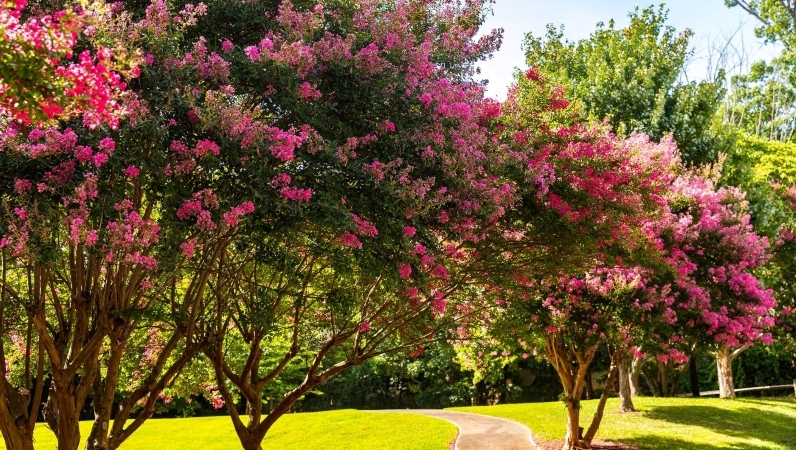 Brookhaven, GA park with flowering trees