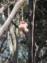 Photo: Year 2 Day 167 - Someone's Left Him Hanging Around