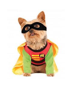 Hunddräkt, Robin