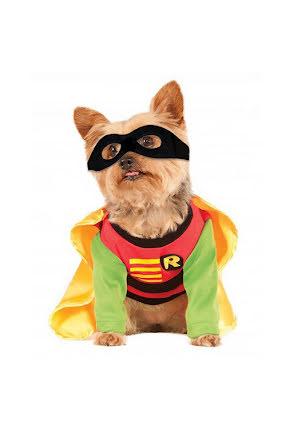 Hunddräkt, Robin M