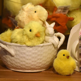 by Lorraine D.  Heaney - Public Holidays Easter