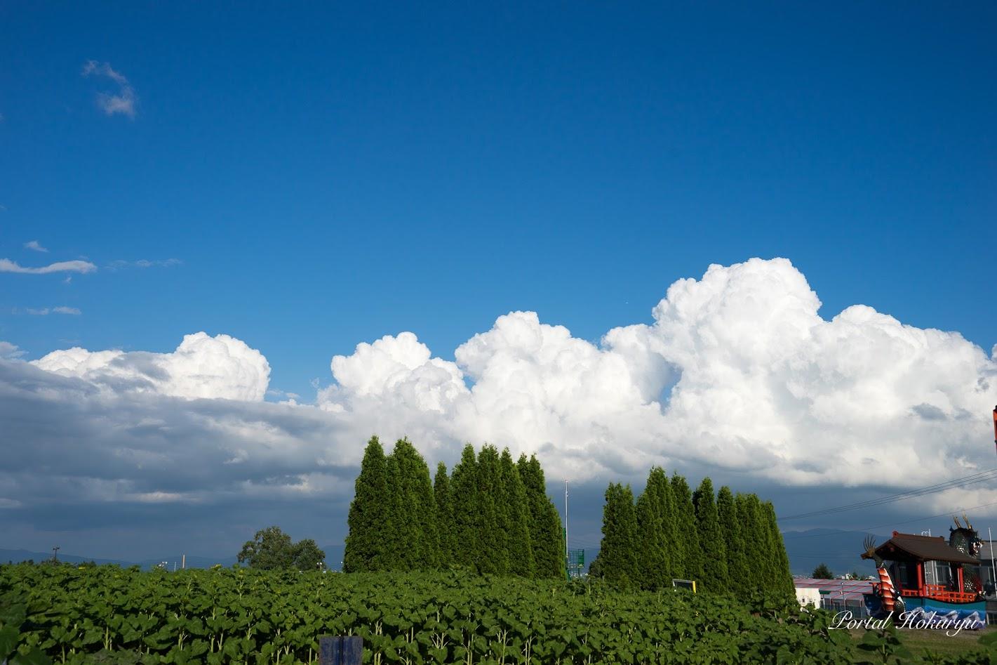 青空に湧き上がる入道雲