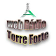 Web Radio Torre Forte Download on Windows