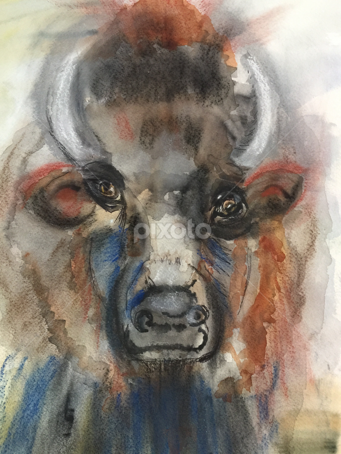 American Bison by Jeanne Knoch - Painting All Painting
