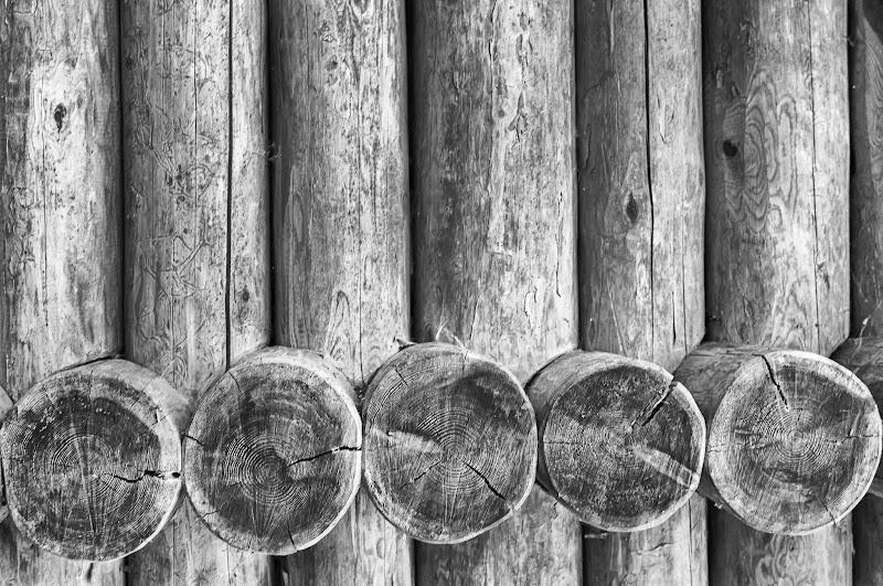 legno di Mauro Moroni