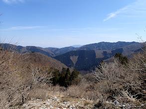 下の林が登山口付近