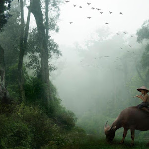 gembala di hutan.jpg