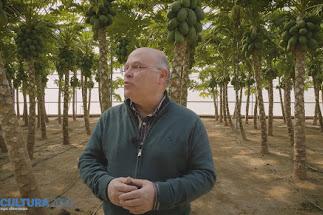 El profesor Camacho durante su explicación sobre el cultivo de la papaya.