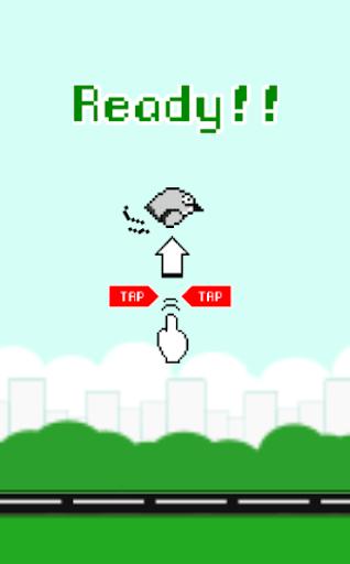 Hoppy Birdy