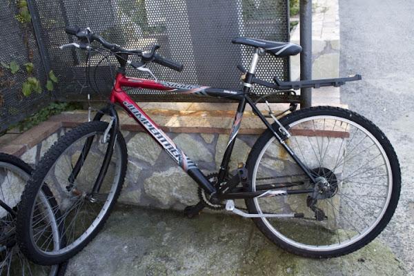 Hai voluto la bici....... di pedro89