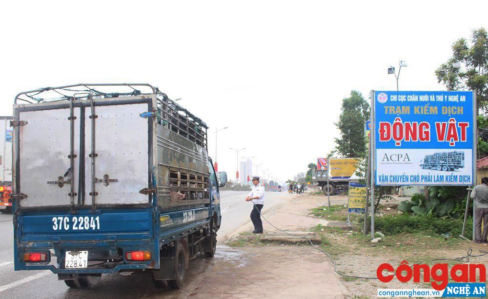 Trạm kiểm dịch được lập và đặt tại huyện Nghĩa Đàn và TX Hoàng Mai