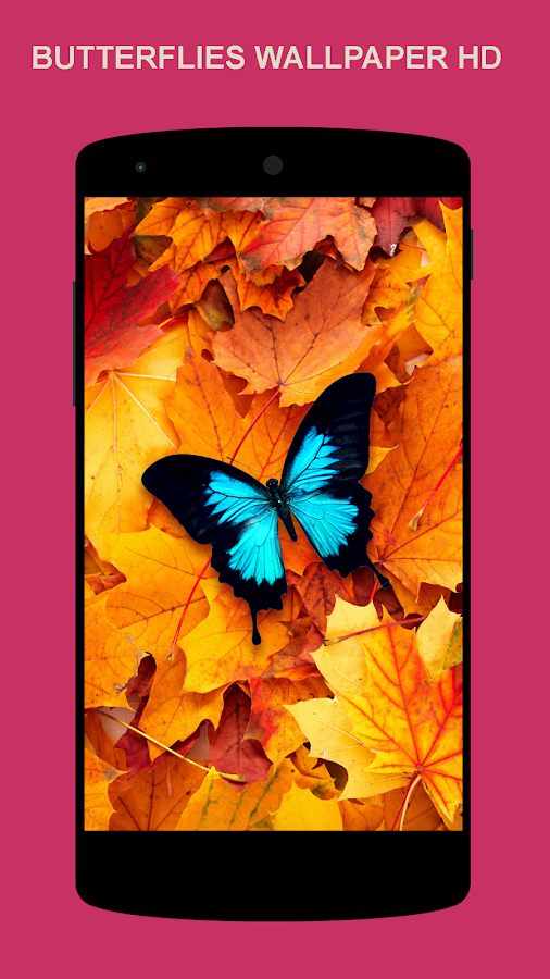 Beautiful Wallpaper Android Apps on Google Play