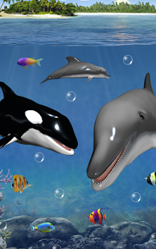 Download dolphins and orcas wallpaper apk latest version app for dolphins and orcas wallpaper poster thecheapjerseys Images