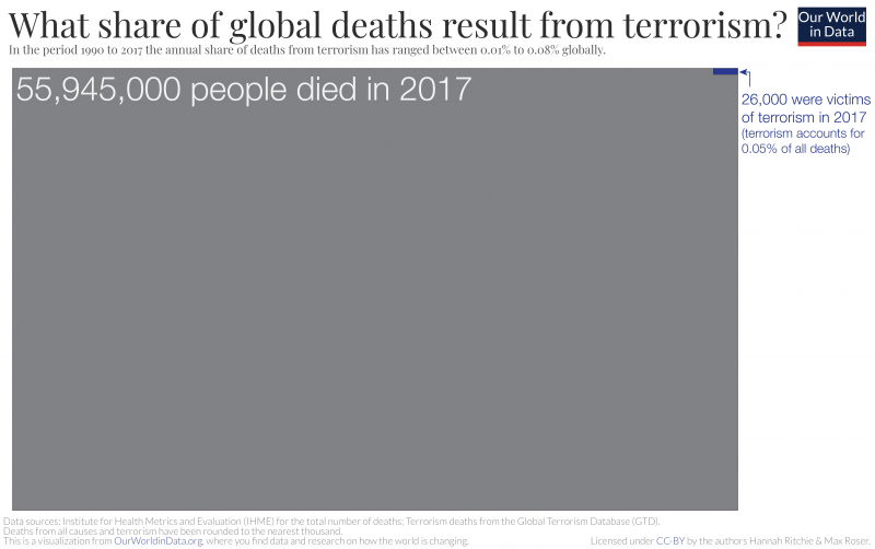 What share of deaths are from terrorism