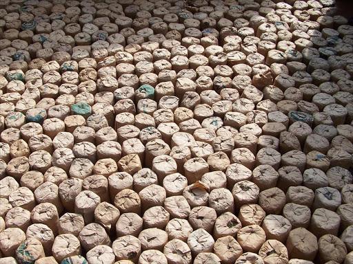 Image result for images of bhang in samburu