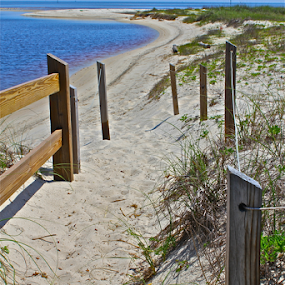Through the Dunes by Susannah Lord - Landscapes Waterscapes ( water, sand, fence, dunes, sky, wood, blue, posts, beach,  )