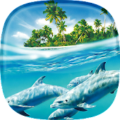 Dolphin Live Wallpaper 🐬 Pictures of Dolphins