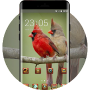 Red flame birdie theme pets APK