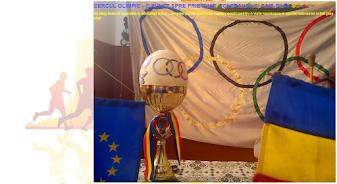 ed5 (ELECTRONIC - blog, site, aplicatie) cercul olimpic - punte spre prietenie, toleranta s_ŞCOALA GIMNAZIALĂ_ZIDURI_ZIDURI_BUZAU
