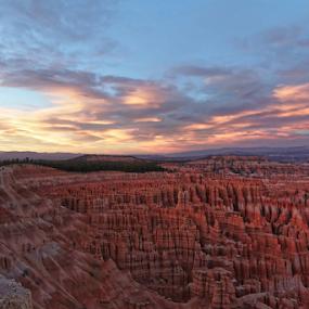 Sunset at Bryce by Eric Ebling - Landscapes Sunsets & Sunrises ( national park, utah, sunset, canyon, hoodoo, bryce canyon )