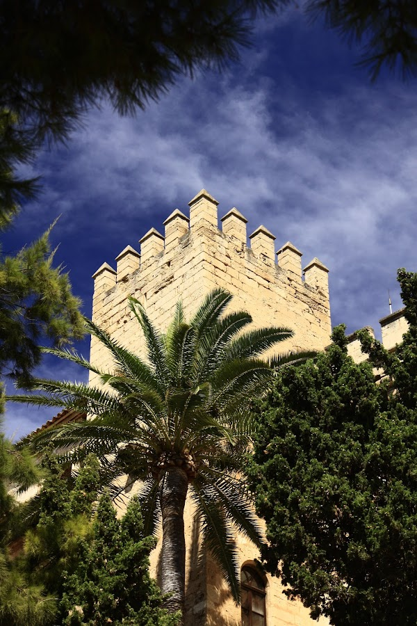 Catedral tower by Andy Esand - Buildings & Architecture Architectural Detail ( cathedral, mallorca, spain )