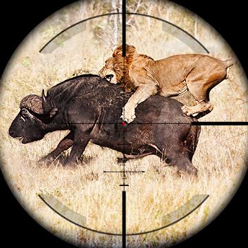 Animal Hunting: Safari 4x4 armed action shooter