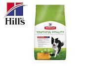 Angebot für 10kg Youthful Vitality für mittelgroße Hunde im Supermarkt