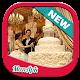 Wedding Cake Decoration (app)