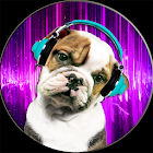 Tease Dog Sounds of Cat icon