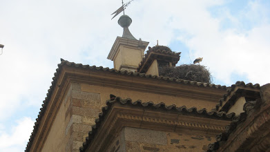 Photo: Storks in Alba de Tormes