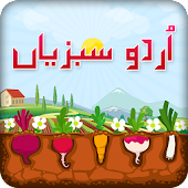 Urdu Vegetables Kids Book