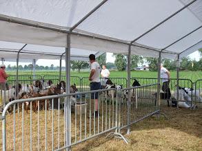 Photo: Aankomst van de inzenders met hun dieren.