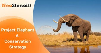 Project Elephant- A Conservation Strategy