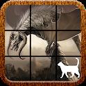 Dragon Slide Puzzle icon