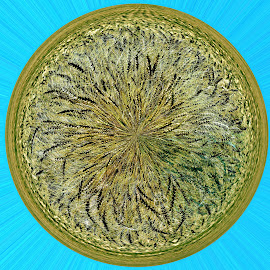 Wheat medal by Gaylord Mink - Abstract Patterns ( wheat, abstract, medal )