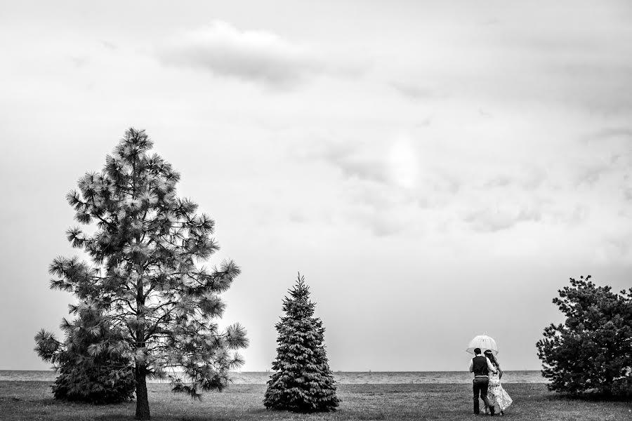 Wedding photographer Milan Lazic (wsphotography). Photo of 11.09.2019