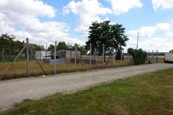 terrain à Saint-Loup-de-Gonois (45)